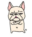 สติ๊กเกอร์น้องหมา French Bulldog กอดอก