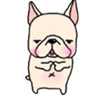 สติ๊กเกอร์น้องหมา French Bulldog เอ่อ