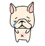 สติ๊กเกอร์น้องหมา French Bulldog เศร้า