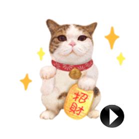 สติ๊กเกอร์ไลน์ชุด Kingdom of Tigers: Animated Stickers